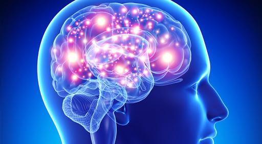 Obama e progetto cervello umano