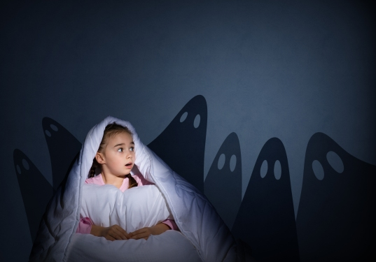 image of a girl under the covers with a flashlight the night afraid of ghosts © Khakimullin Aleksandr / shutterstock_216442720