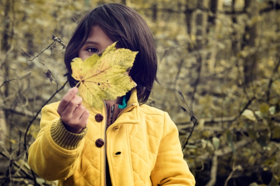 web-boy-child-leaves-forest-philippe-put-cc