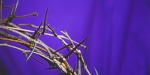 CROWN OF THORNS,GOOD FRIDAY,LENT