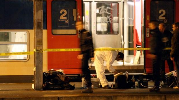 SURVEY HOMICIDE TRANSPORT RER