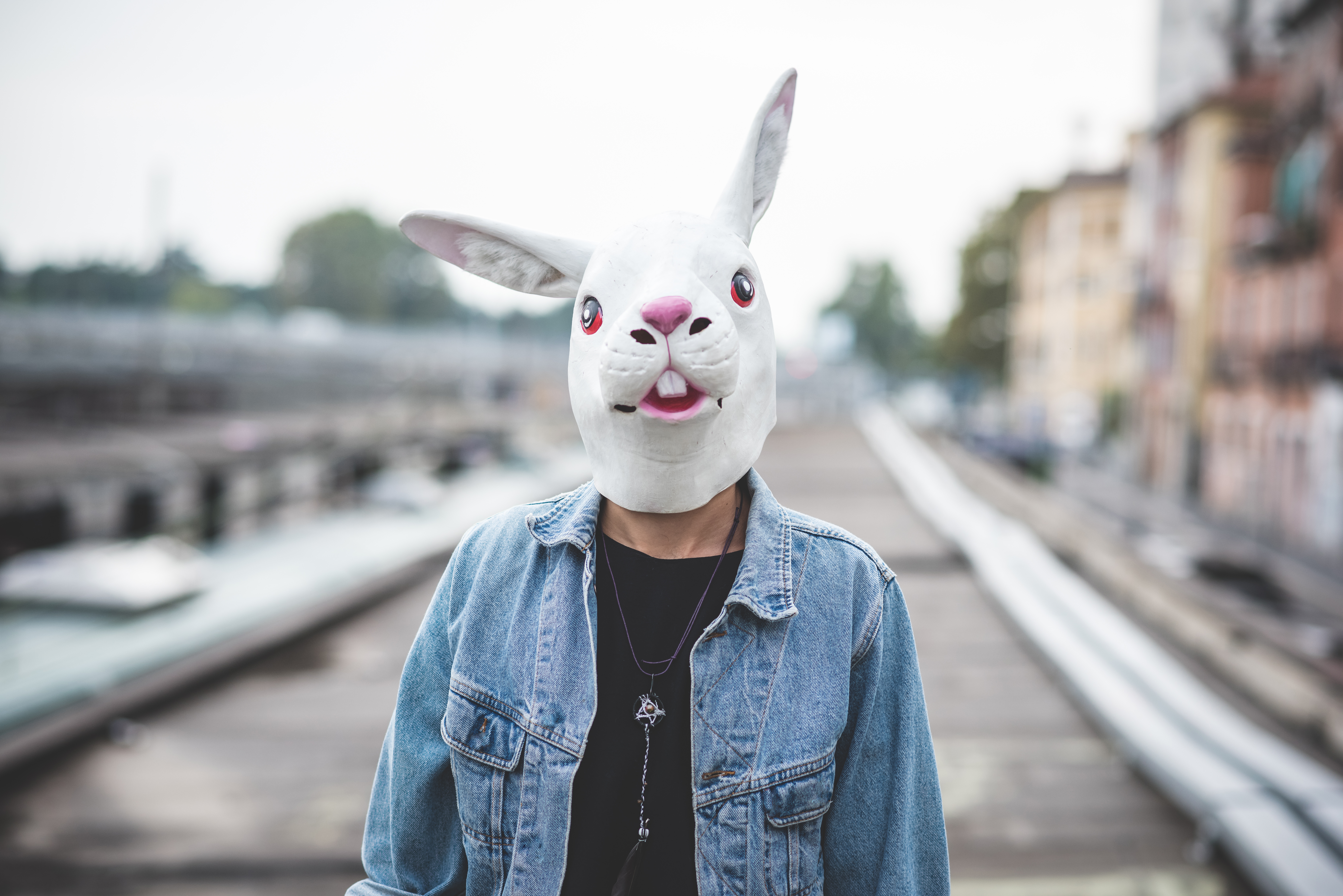 MAN WITH RABBIT MASK