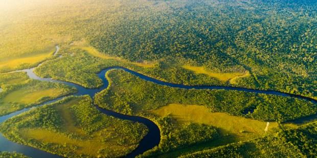AMAZZONIA FORESTA PLUVIALE