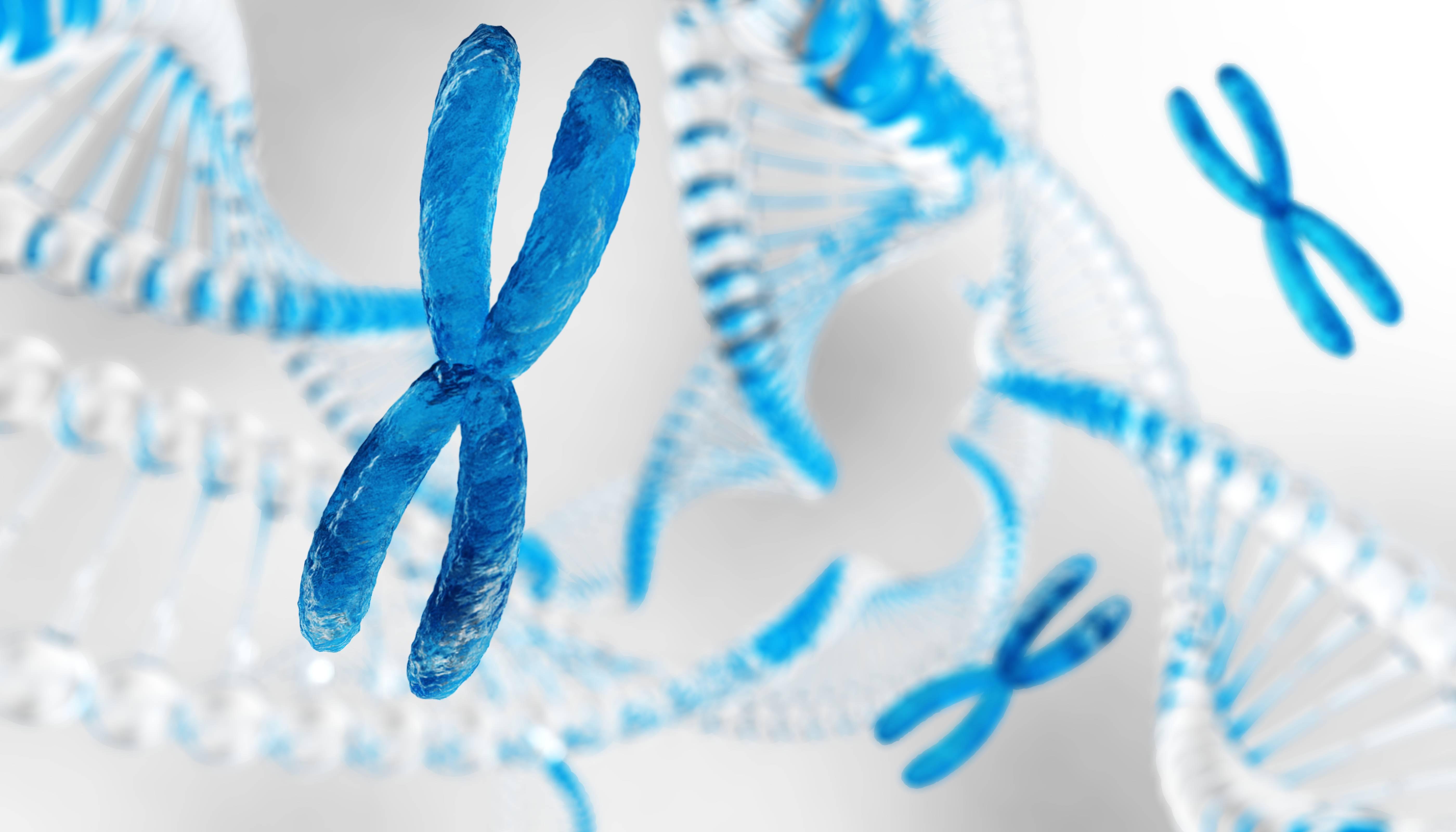 Chromosome - dna
