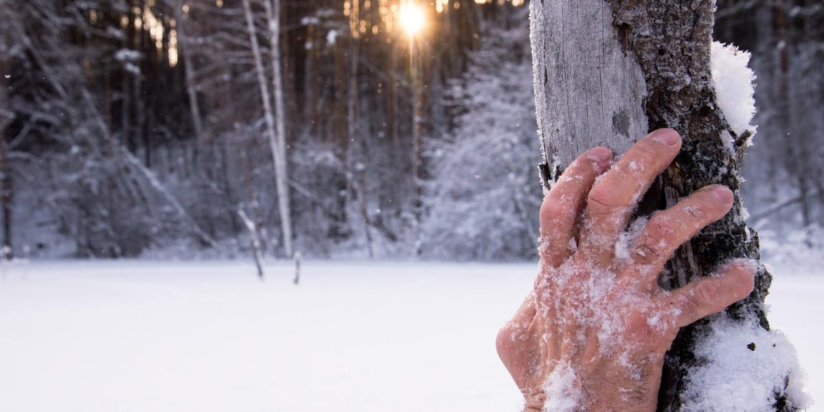 HAND, SNOW, FREEZE