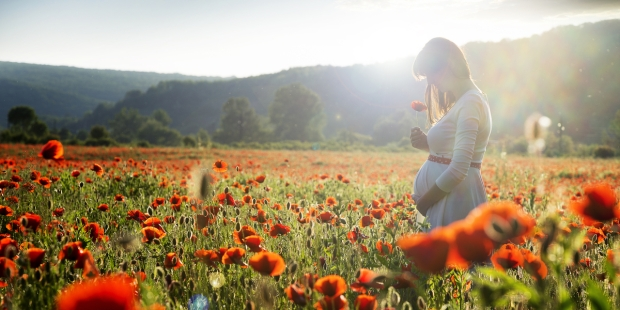 PREGNANT, FIELD, POPPIES