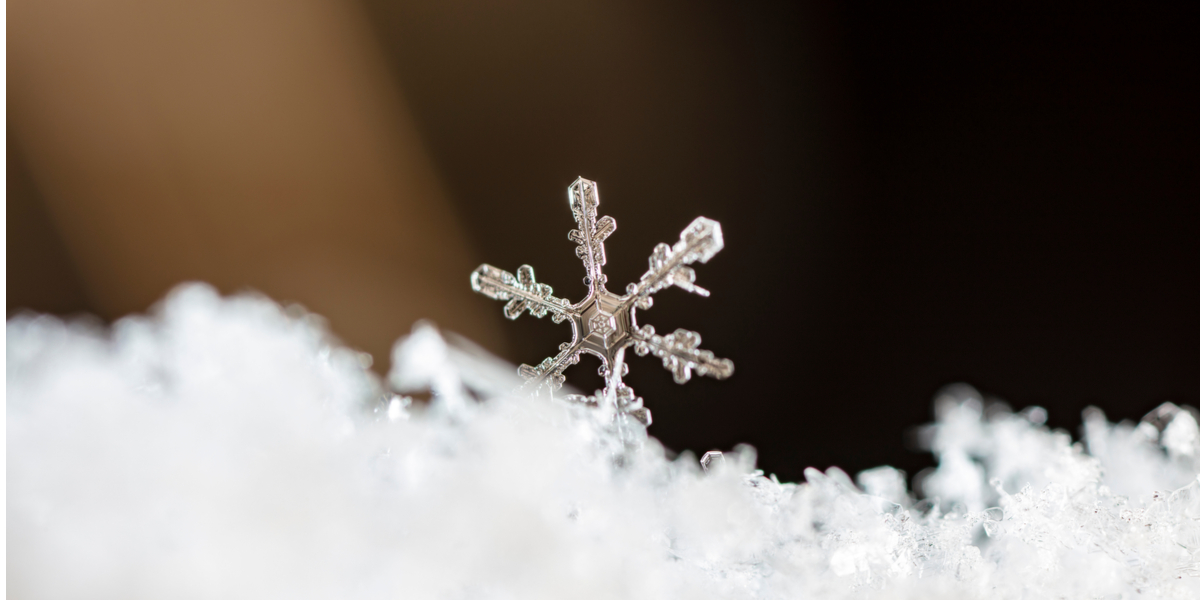 MACRO, SNOWFLAKE
