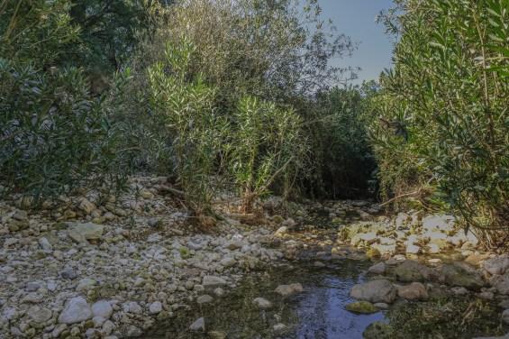 Mount Carmel - river