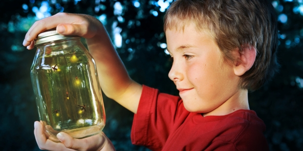 CHILD, JAR, FIREFLIES