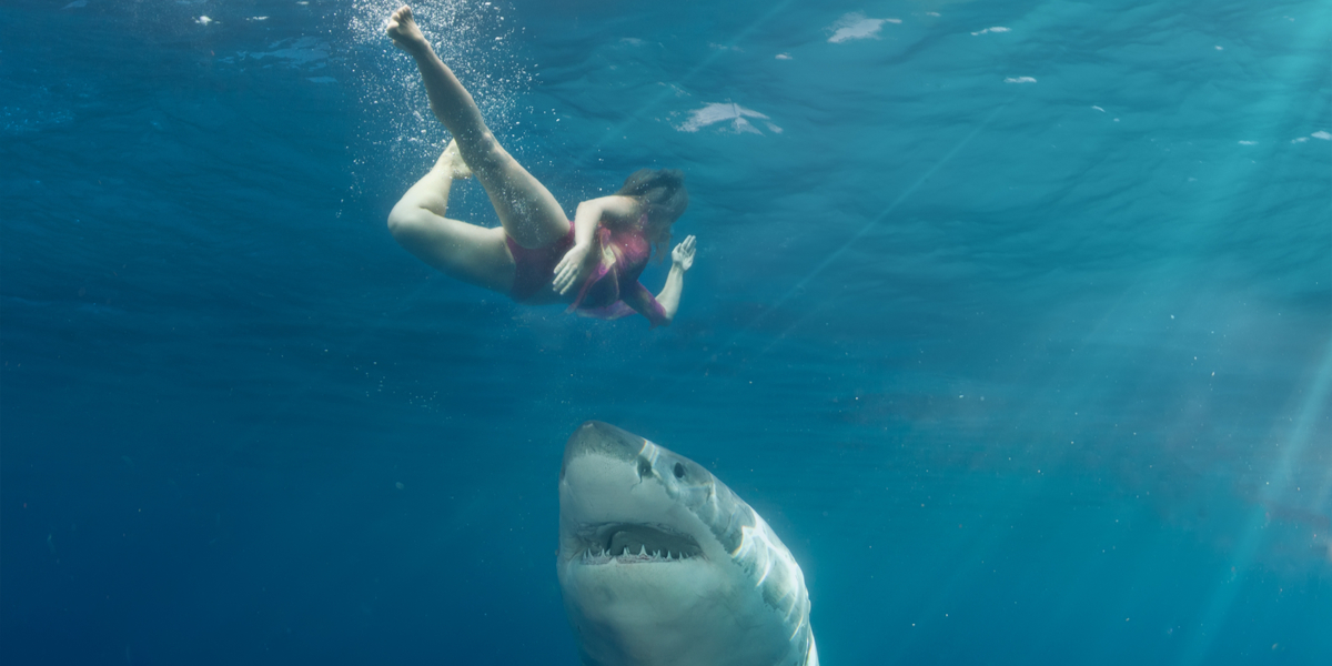 WOMAN, SHARK, SEA