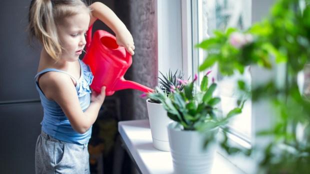 CHILD, WATERING, PLANTS