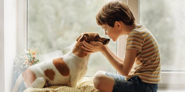 CHILD, DOG, WINDOW