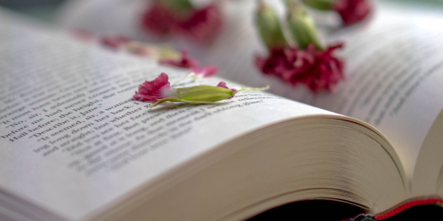 OPEN BOOK, FLOWERS