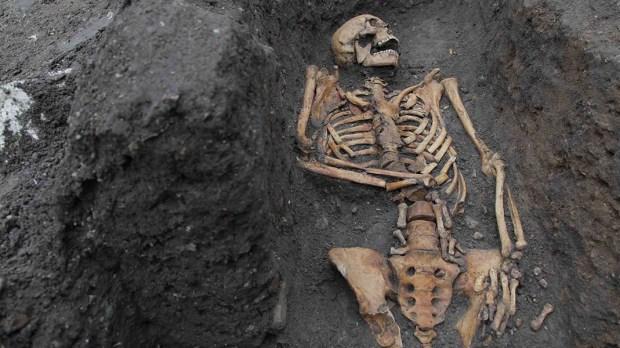 Friar bone analysis