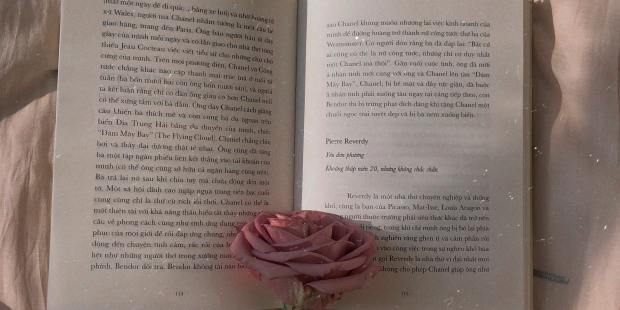 BOOK, ROSE, PINK