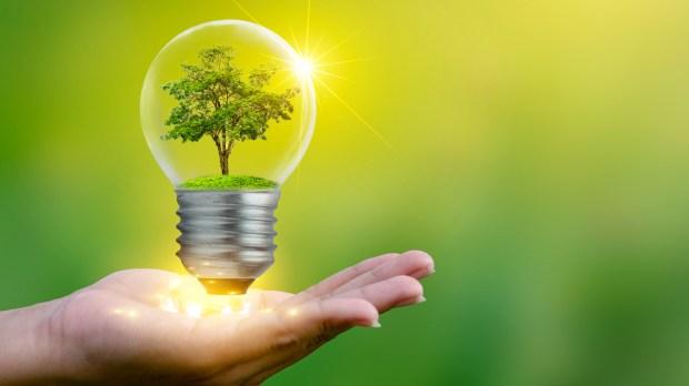 LIGHT BULB ECOLOGIC ENERGY GREEN